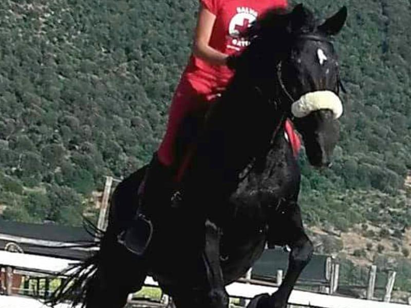 agriturismo-con-maneggio-toscana-maremma-ilbagnolo-roselle4
