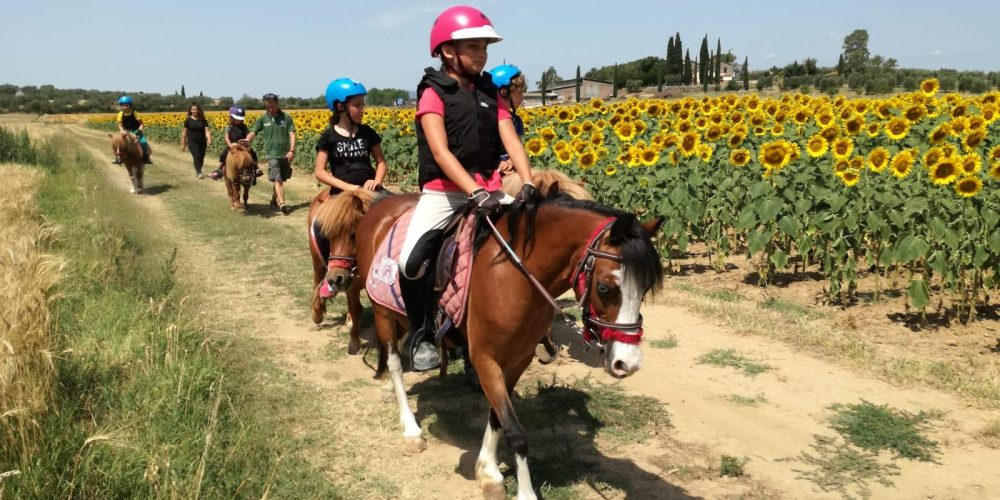 agriturismo grosseto con maneggio in maremma toscana pony