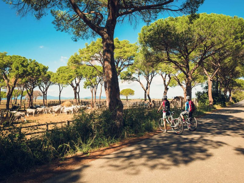 maremma agriturismo pista ciclabile parco della maremma